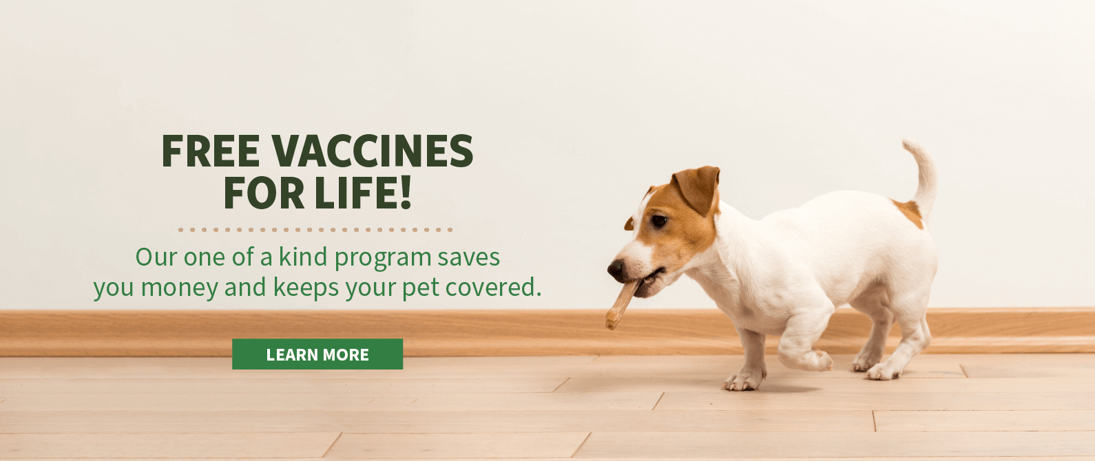 Free Vaccines for Life